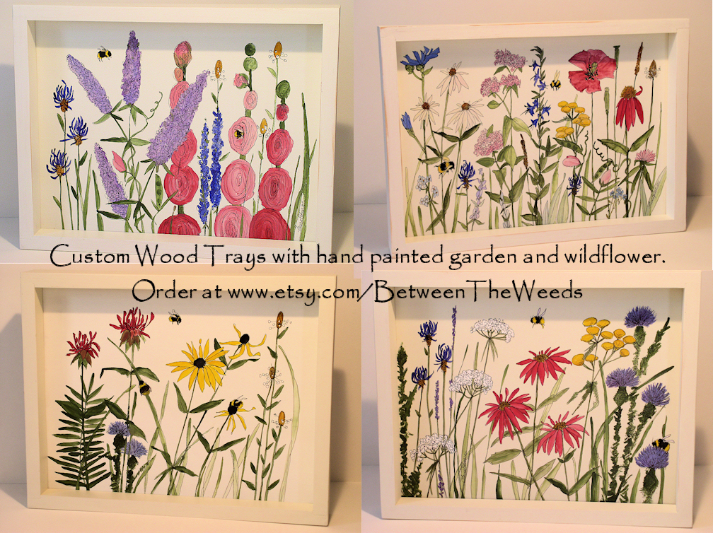 with garden and wildflowers