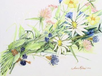 Wildflowers on paper