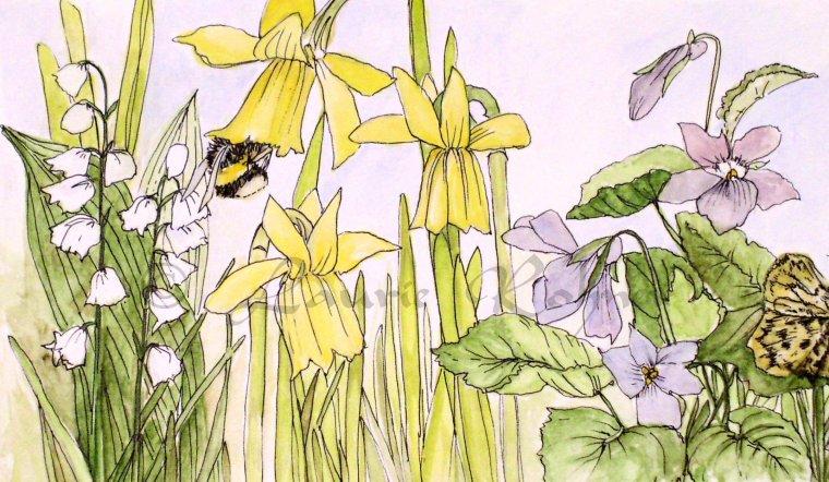 watercolor illustration of garden flowers