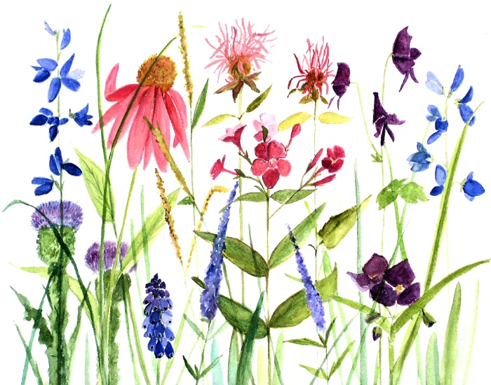 colorful garden flowers print by Laurie Rohner