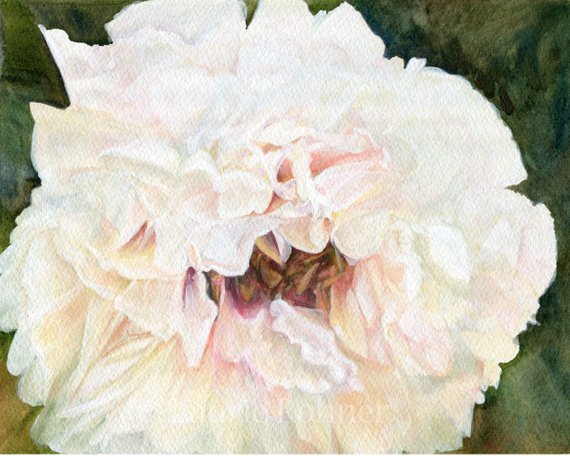 floral watercolor original garden flower
