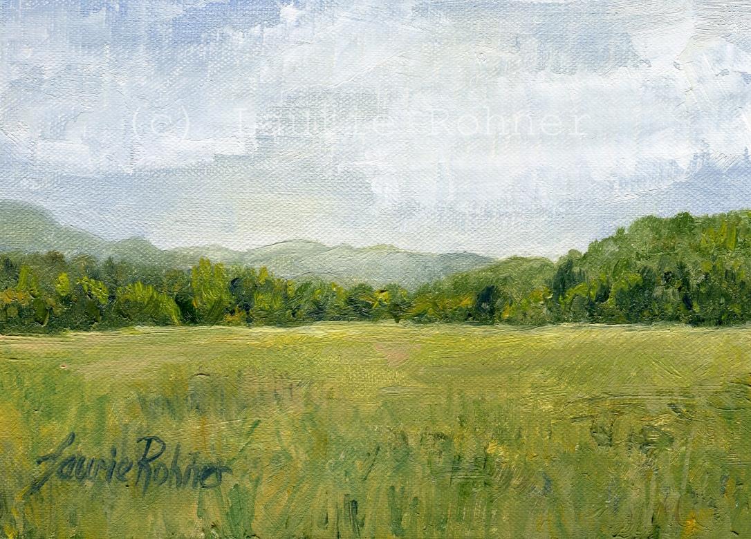 Fields Meet Mountains c